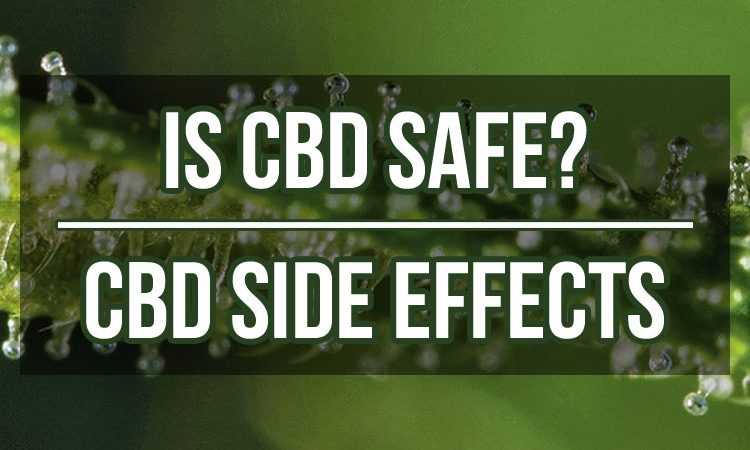 Negative Side Effects of CBD