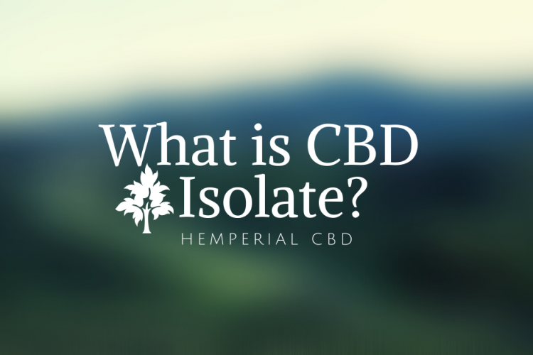 What is CBD Isolate and how do you use it
