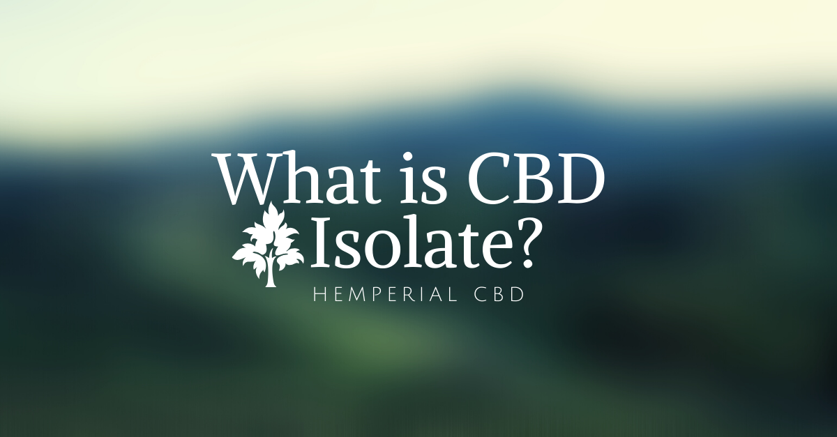 What is CBD isolate, and how do you use it?