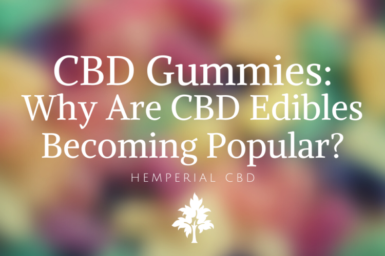 CBD Gummies Why Are CBD Edibles Becoming So Popular