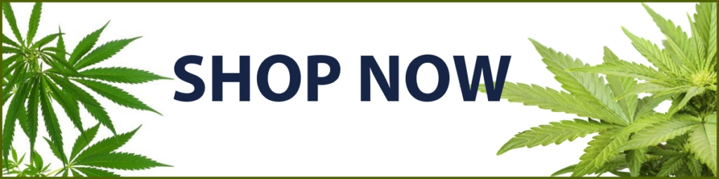 This image has an empty alt attribute; its file name is shop-now-1024x256.png
